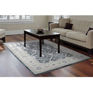 Home Dynamix Antiqua Collection Traditional Area Rug