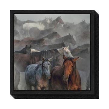 Amanti Art Two Horses by Huseyin Taskin Canvas Framed Art