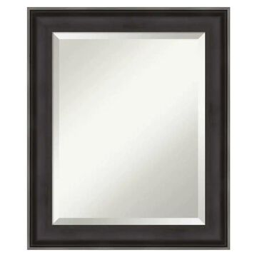 Amanti Art Allure Charcoal Frame Collection 20.38-in Distressed Black Rectangular Bathroom Mirror | DSW4094035