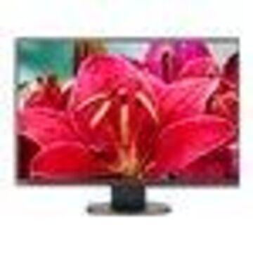 NEC MultiSync EA245WMI-BK - LED monitor - 24