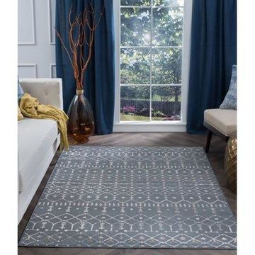Bliss Rugs Hilda Transitional Indoor Area Rug