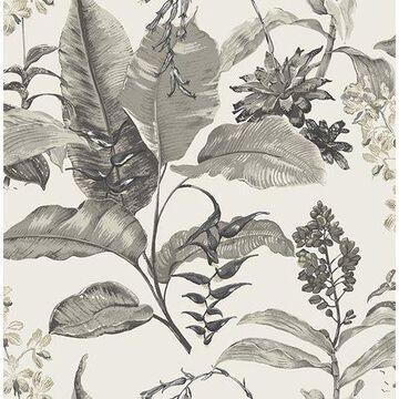 Kenneth James Maui White Botanical Wallpaper
