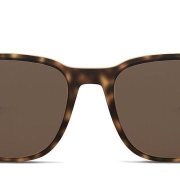 Emporio Armani EA4149 Sunglasses Online