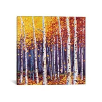 """iCanvas Evanescence by Kimberly Adams Wrapped Canvas Print - 37"""" x 37"""""""