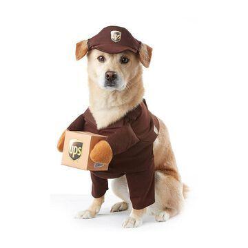 Buyseasons UPS Pet Costume