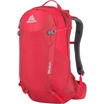 Gregory Salvo 24L Backpack