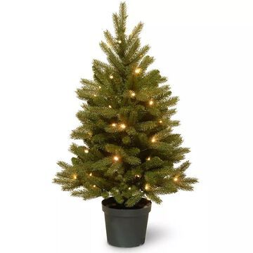 National Tree Company 3-ft. Pre-Lit Artificial Jersey Fraser Fir Christmas Tree, Green