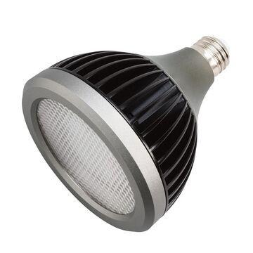 Kichler Landscape PAR38 17W LED 4200K 25Deg Bulb