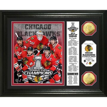 """Highland Mint Chicago Blackhawks 13"""" x 16"""" 2013 Stanley Cup Champions Banner Gold Coin Photo Mint"""