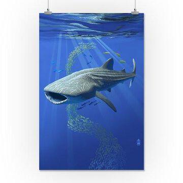Whale Shark - Lantern Press Poster (16x24 Giclee Gallery Print, Wall Decor Travel Poster)