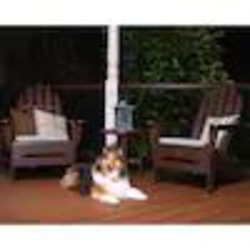 Trex Outdoor Furniture Cape Cod Plastic Stationary Adirondack Chair(s) with Slat Seat