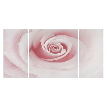 Wexford Home 'Rose Embrace' Canvas Premium Multi Piece Art