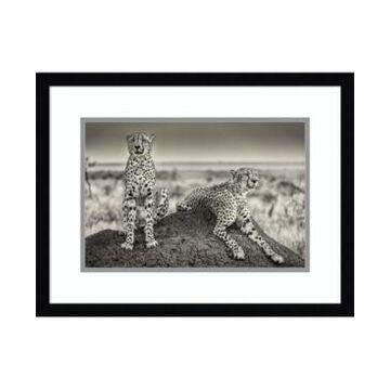 Amanti Art Two Cheetahs Watching Out Framed Art Print