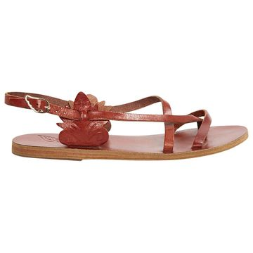 Ancient Greek Sandals Brown Leather Sandals