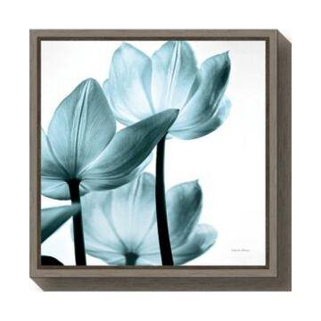 Amanti Art Translucent Tulips Iii Aqua by Debra Van Swearingen Canvas Framed Art