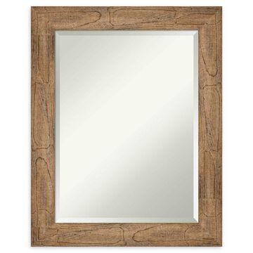 Amanti Art Owl Brown Framed Wall Mirror