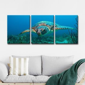 Ready2HangArt 'Turtle' 3-Piece Canvas Art Set