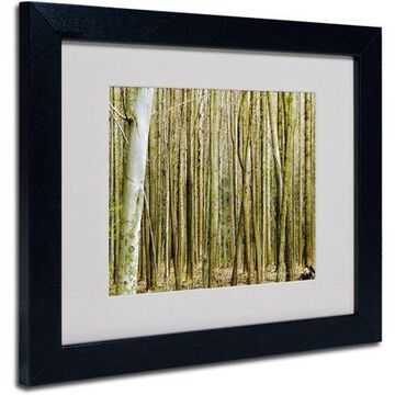 Trademark Art 'Forest Floor Spring' Matted Framed Art by Kathie McCurdy
