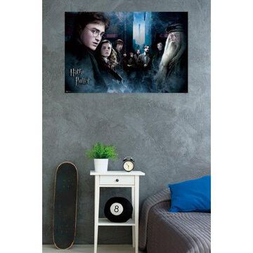 Trends International Harry Potter 6 Fraternity Wall Poster 22.375