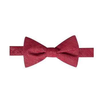 Ryan Seacrest Distinction Mens Shimmer Chiffon Self-tied Bow Tie