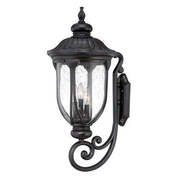 Acclaim Lighting 2221 Laurens 3 Light Outdoor Wall Sconce