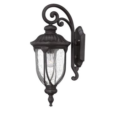 Acclaim Lighting Laurens 22.5-in H Black Coral Medium Base (E-26) Outdoor Wall Light