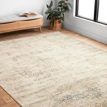 Alexander Home Augustus Persian Inspired Distressed Area Rug (3'1 x 5'7