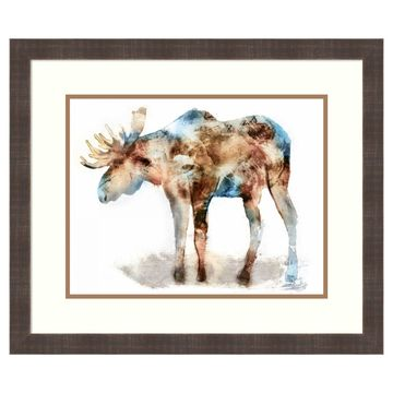 Amanti Art Moose Framed Wall Art