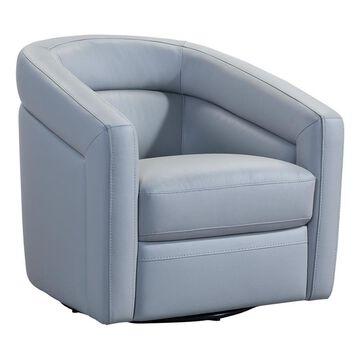 Armen Living Desi Modern Dove Grey LeatherAccent Chair Polyester in Gray   LCDSCHDV