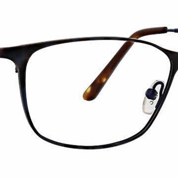 XOXO Taza Eyeglasses in Tortoise