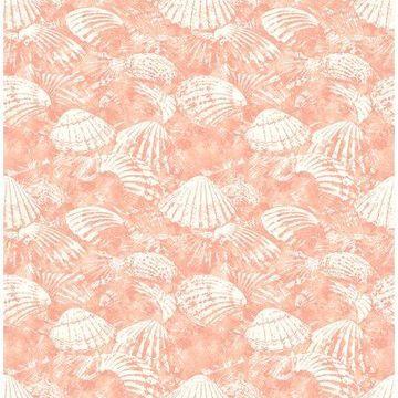 Brewster Surfside Coral Shells Wallpaper