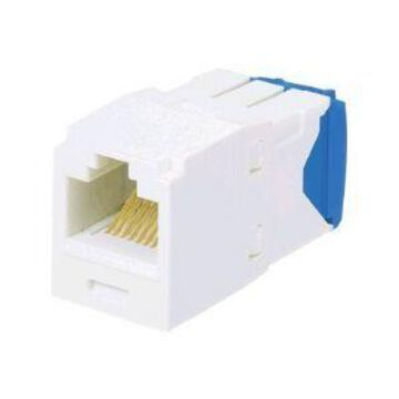 Panduit MINI-COM TX-6 10Gig - Modular insert - blue - 1 port