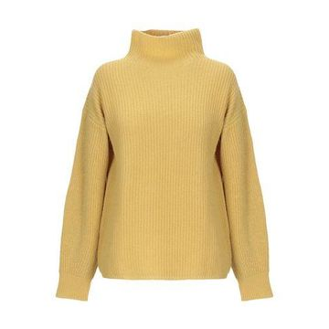 ANTONELLI Turtleneck