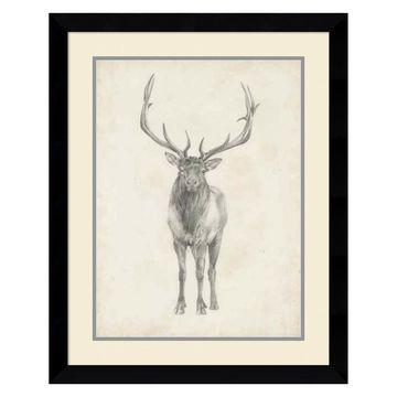 Amanti Art Elk Study Framed Wall Art