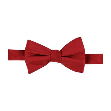 Ryan Seacrest Distinction Mens Basic Bow Tie