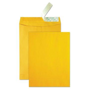 Quality Park High Bulk Redi Strip Catalog Envelope 10 x 13 250/Box 41620
