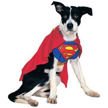 Buyseasons Superman Pet Costume