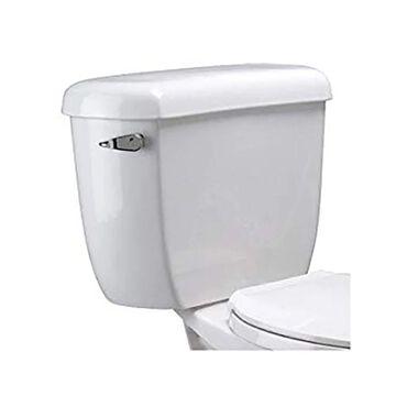 Zurn EcoVantage Dual Flush Elongated Two Piece Toliet Z5562 White