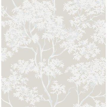 Brewster Paix Grey Trees Wallpaper