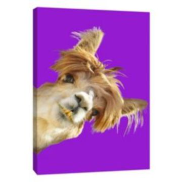 Ptm Images, Alpaca On Purple Decorative Canvas Wall Art