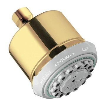Hansgrohe 28496931 Clubmaster Polished Brass Showerhead