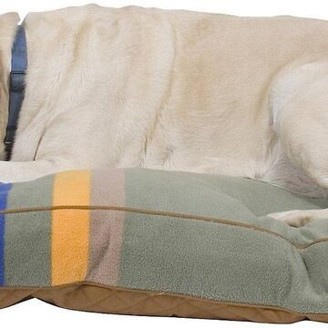 Pendleton Rocky Mountain National Park Pillow Dog Bed w/Removable Cover