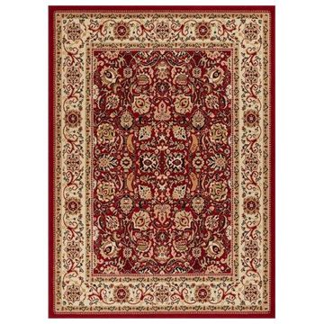 Well Woven Persa Tabriz Traditional Oriental Area Rug PA-10