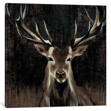 iCanvas ''Young Buck'' by Liz Jardine