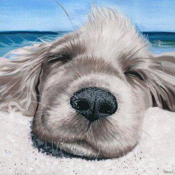 Parvez Taj Relaxing Dog Canvas Wall Art