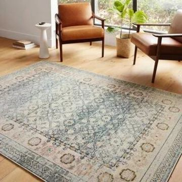 Alexander Home Luxe Shabby Chic Antiqued Distressed Oriental Area Rug