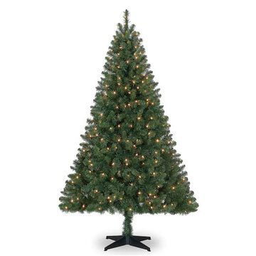6Ft Pre-Lit Windham Spruce Artificial Christmas Tree, Clear Lights by Ashland   Michaels
