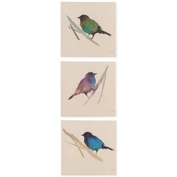Madison Park Branch & Flight 3-Pc. Linen Canvas Print Set