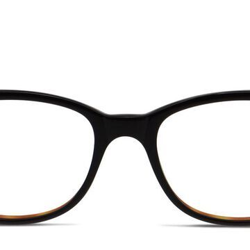 Tod's TO5040 Glasses Online