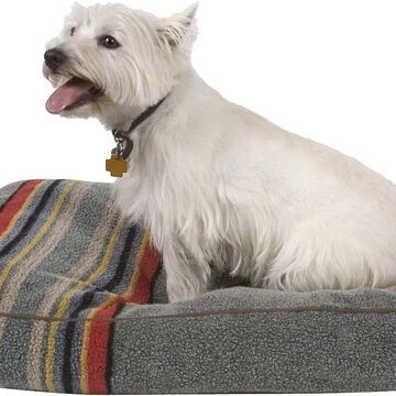 Pendleton Yakima Camp Pillow Dog Bed w/Removable Cover